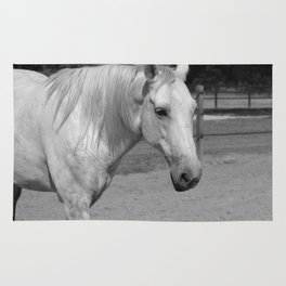 Horse In Black And White Rug