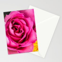 Pink Rose 1 Stationery Cards