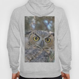 Young Owl at Noon Hoody