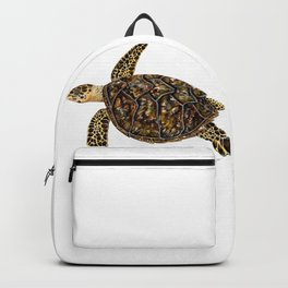 Hawksbill sea turtle (Eretmochelys imbricata) Backpack