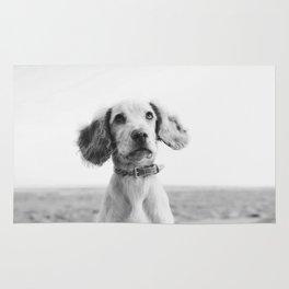 Man's Best Friend (Black and White) Rug