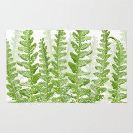 Green Fern Group Rug
