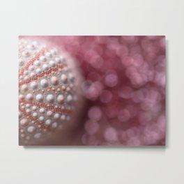Pink Sea Urchin In The Pink Sea... Metal Print
