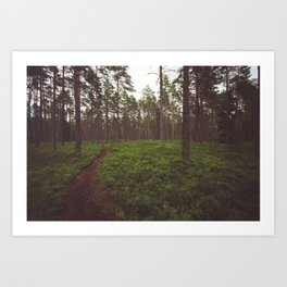Swedish Views #5 Art Print