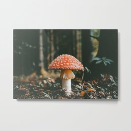 Magical Forest Mushroom Metal Print