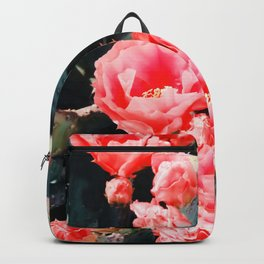 closeup blooming red cactus flower texture background Backpack
