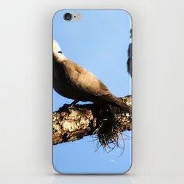 Lovey Dovey iPhone Skin