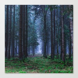 Green Magic Forest - Landscape Nature Photography Canvas Print