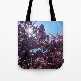 Sweet Creations Tote Bag