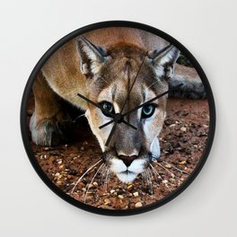 Hover-Cat ~Tin Cup ~ TC The Mountain Lion Wall Clock