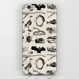 Various Animal Skeletons iPhone Skin