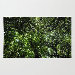 umbrella of trees Rug