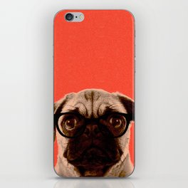 Geek Pug in Red Background iPhone Skin