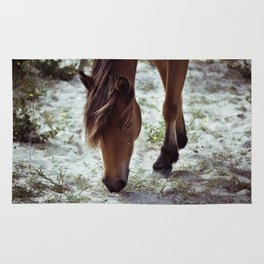 Grazing Pony Rug