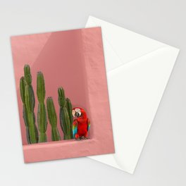 Macaw in Mexico Stationery Cards