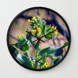 Fiddleneck Wall Clock