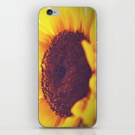 sunflower II iPhone Skin