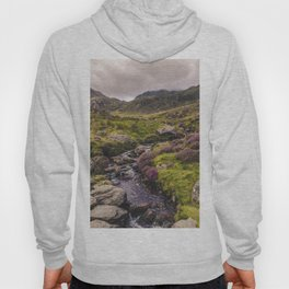 Cwm Idwal Snowdonia Eryri Walk Mountain Heather Wales Hoody