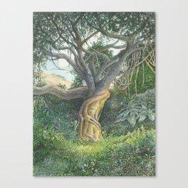 My Back Garden Canvas Print