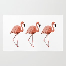 A Flamboyance of Flamingoes - Flamenco - 57 Montgomery Ave Rug