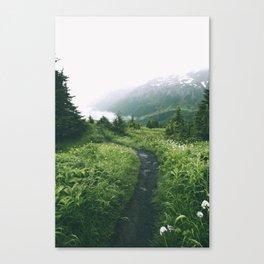 Happy Trails XIX Canvas Print
