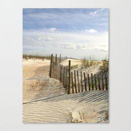 Trailing the Beach Fence Canvas Print