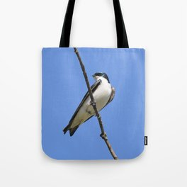 Handsome Male Tree Swallow on a Branch Tote Bag