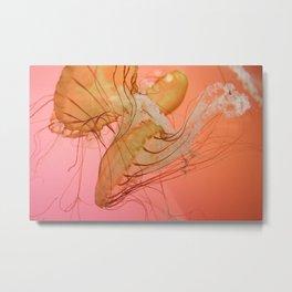 even more jellyfish Metal Print