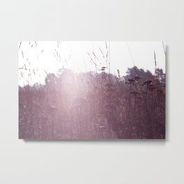 late summer Metal Print