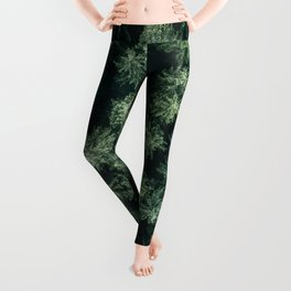 Forest from above - Landscape Photography Leggings