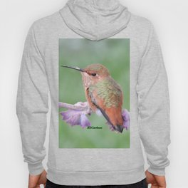 DO NOT Raid My Patch of Sage Hoody