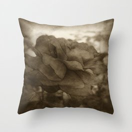 Red Rose Edges Antiqued Throw Pillow