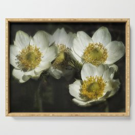 Pasque Flowers Serving Tray
