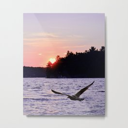 Fly into the Sunset Metal Print