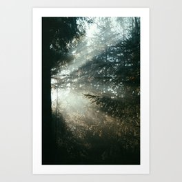 sunray madness Art Print