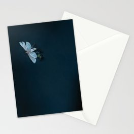 Calm Water Lifecycles Stationery Cards