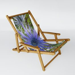 A thistle with style Sling Chair