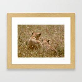 Brother Lions Framed Art Print