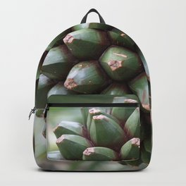 Pandan Backpack