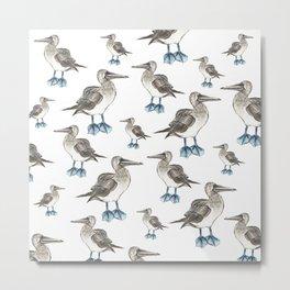 blue foot bobbie pattern Metal Print