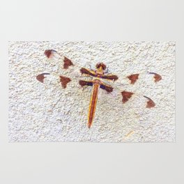Dragonfly on Wall | Nature Photography | Dragonflies | Nadia Bonello Rug
