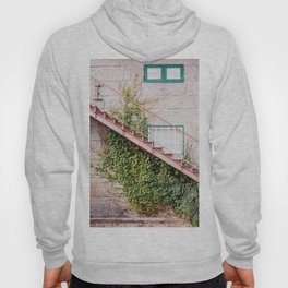 Stone House with Ivy Wall Hoody