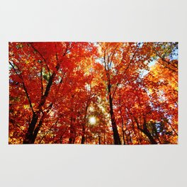 Sun in the Trees Rug