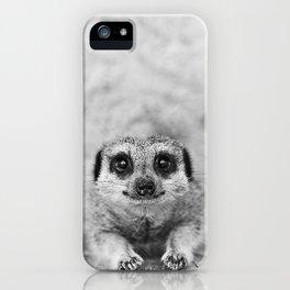 Smiling Meerkat iPhone Case