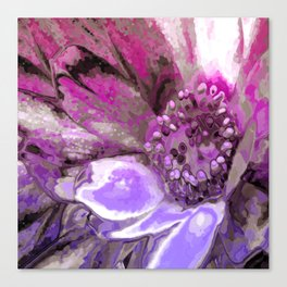 In Sunlight, Petunia Reflections Canvas Print