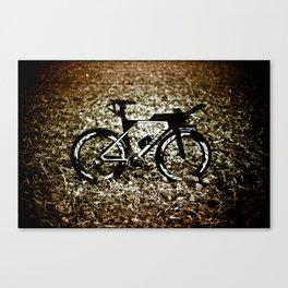 Leica Canyon Canvas Print