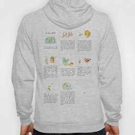 The story of the Chicken Frog Hoody