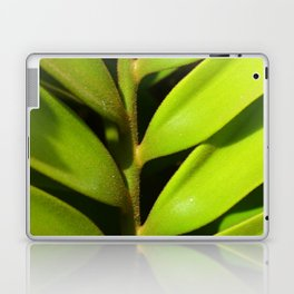Vegetal balance Laptop & iPad Skin