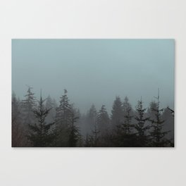Pacific Trees Canvas Print