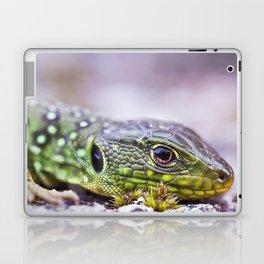 Ocelated Lizard Laptop & iPad Skin